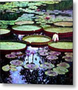 The Beauty Of Stillness Metal Print