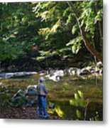 The Beauty Of Trout Fishing 2 - Original Photography Metal Print