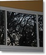The Branch Window Metal Print