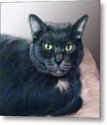 The Cat Named Boy Metal Print