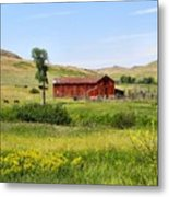 The Color Of Montana Metal Print