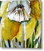 The Daffodil Metal Print