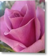 The Flower Of Love Metal Print by Patricia M Shanahan