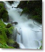 The Flowing Brook Metal Print