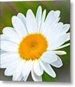 The Friendliest Flower Metal Print