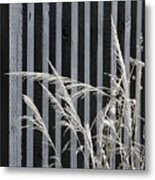 The Grass And Fence Metal Print