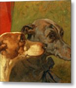 The Greyhounds Charley And Jimmy In An Interior Metal Print by John Frederick Herring Snr