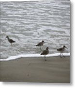The Gulf In Shades Of Gray - One Opposed Metal Print