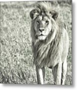 The King Stands Tall Metal Print