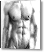 The Male  Metal Print