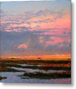 The Marsh  Metal Print by Gary Gowans