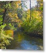 The River  Metal Print by Sheryl Thomas