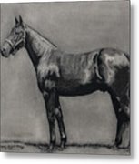The Standardbred Metal Print by Thomas Allen Pauly