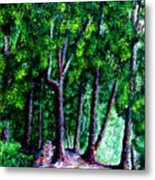 The Trail Metal Print
