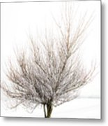 The Tree Metal Print by Svetlana Sewell
