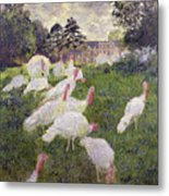 The Turkeys At The Chateau De Rottembourg Metal Print