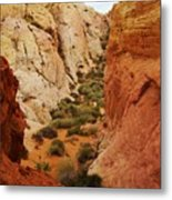 The Valley Of Fire 126 Metal Print