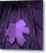 The Violet Leaf Metal Print