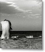 The Wind Metal Print