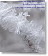 There Are Many Lessons To Learn... Metal Print