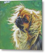 Tibetan Spaniel And Cabbage White Butterfly Metal Print