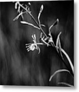 Tickled By The Wind Metal Print