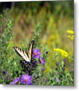 Tiger Swallowtail And Bee Metal Print