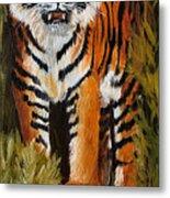 Tiger Wildlife Art Metal Print
