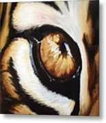 Tiger's Eye Metal Print by Lane Owen