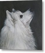 To Live With A White Dog Metal Print
