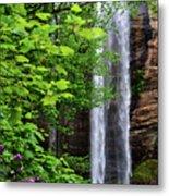 Toccoa Falls In Georgia Metal Print