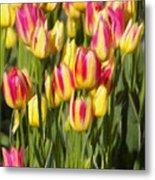 Too Many Tulips Metal Print by Jeff Kolker