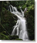 Top Of Mouse Creek Falls  Metal Print