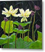 Touching Lotus Blooms Metal Print