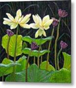 Touching Lotus Blooms Metal Print