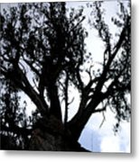 Tough Tree Metal Print