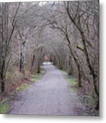 Trail Tunnel Metal Print