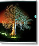Tree And Moon Metal Print