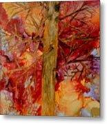 Tree At Sunset Metal Print