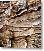 Tree Bark Abstract Metal Print