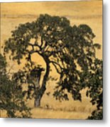 Tree Formation 2 Metal Print