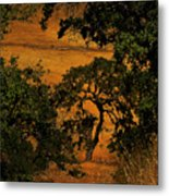 Tree Formation Metal Print