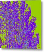 Tree Leaves D4 Metal Print