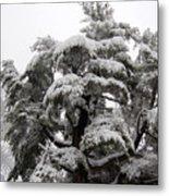Tree-sicle Metal Print