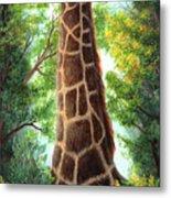 Tree Top Browser Metal Print