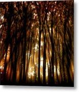 Trees 2 Metal Print by Tony Wood