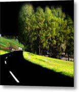 Trees In Upper Austria Metal Print