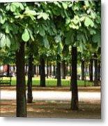Trees Of Tuilieres Metal Print