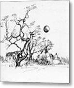 Trees Rocks And A Ball Metal Print