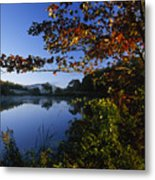 Trees With Fall Colors Along The Still Metal Print